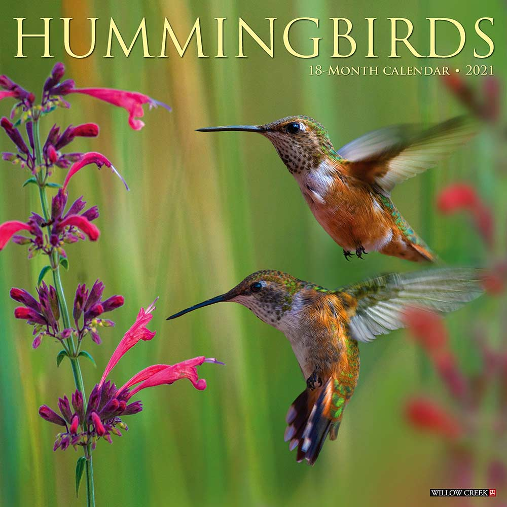 2021 Hummingbirds Calendar Willow Creek
