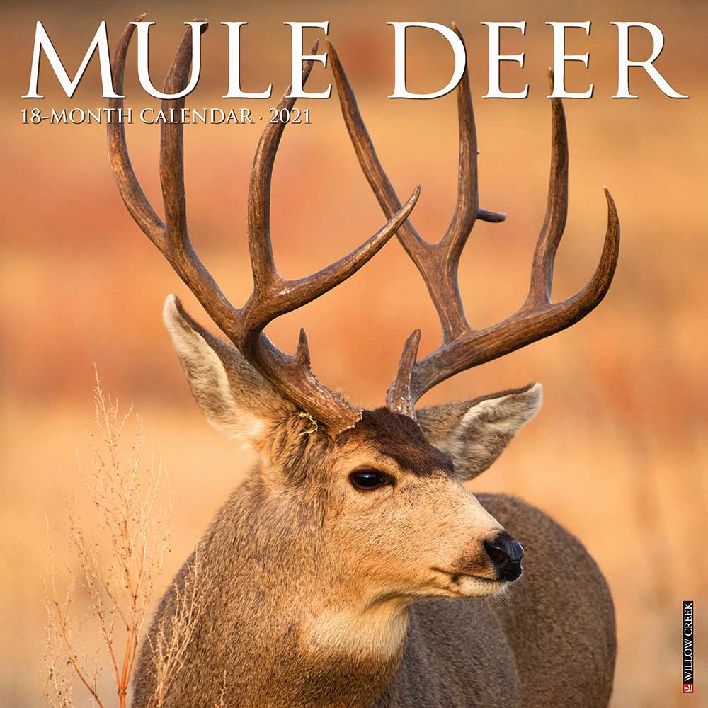 2021 Mule Deer Calendar Willow Creek