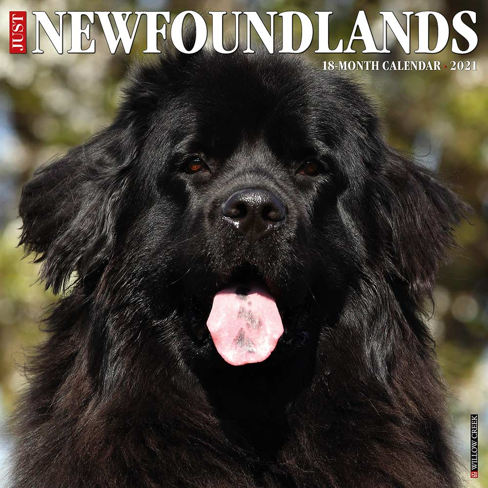 2021 Newfoundlands Calendar Willow Creek