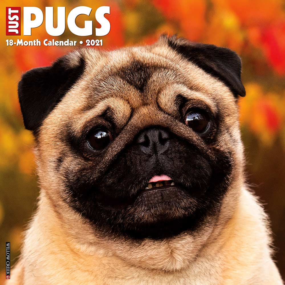 2021 Pugs Calendar Willow Creek