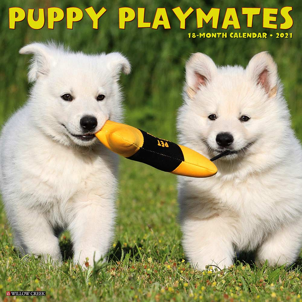 2021 Puppy Playmates Calendar Willow Creek