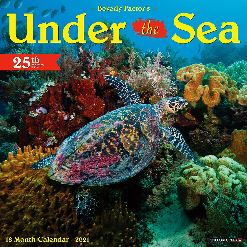 2021 Under the Sea Calendar Willow Creek