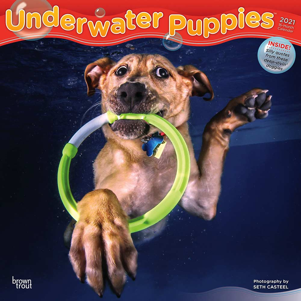2021 Underwater Puppies Calendar
