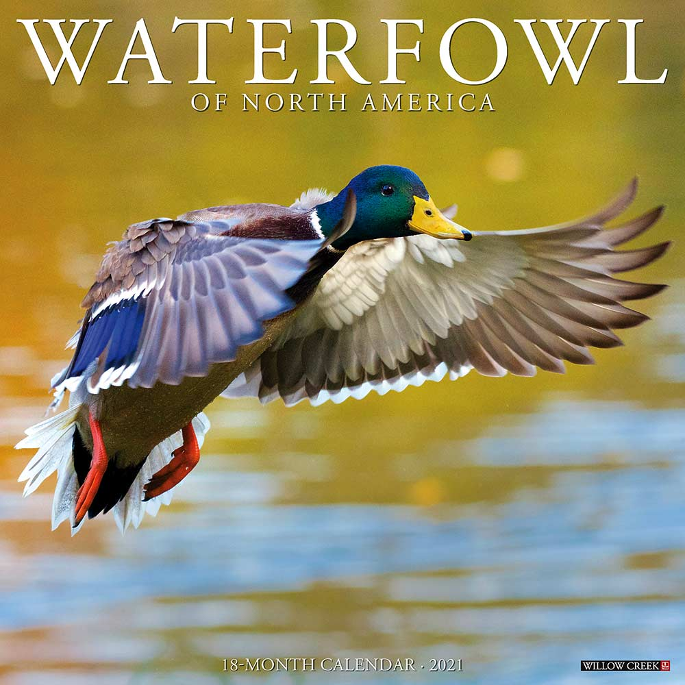2021 Waterfowl  Calendar Willow Creek