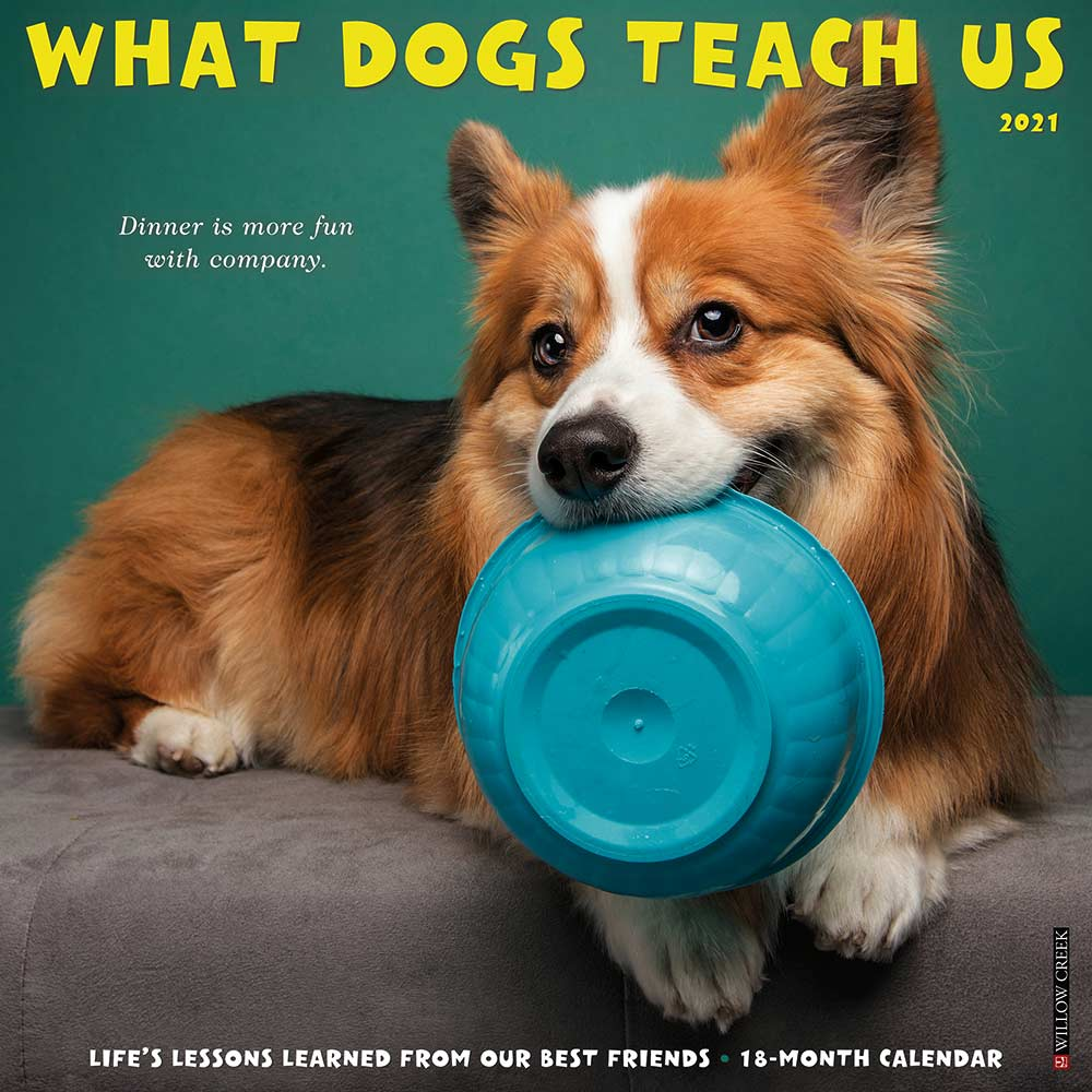 2021 What Dogs Teach Us Calendar Willow Creek