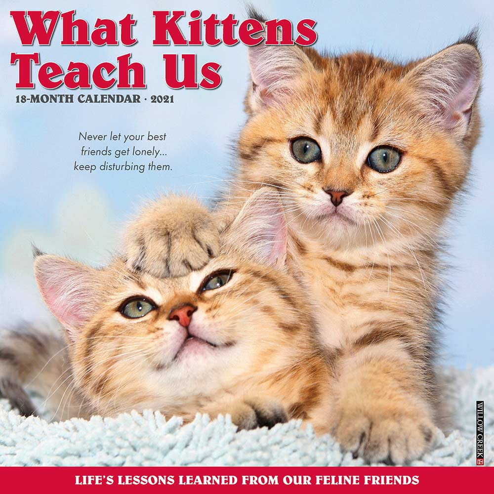 2021 What Kittens Teach Us Calendar Willow Creek