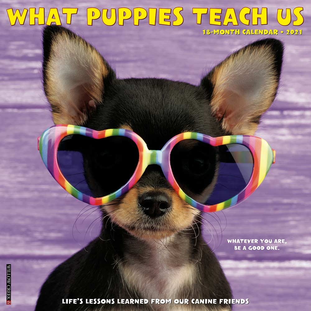 2021 What Puppies Teach Us Calendar Willow Creek