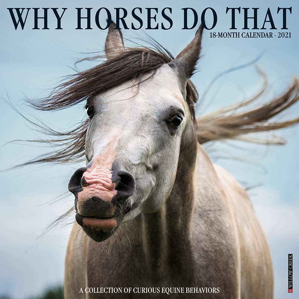 2021 Why Horses Do That Calendar Willow Creek