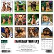 2021 Airedale Terriers Calendar Willow Creek