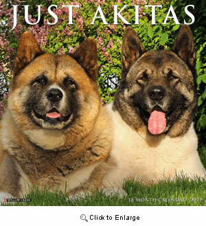 2021 Akitas Calendar Willow Creek