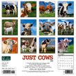 2021 Cows Calendar Willow Creek