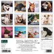 2021 Dog-Gone-It Calendar