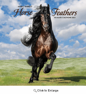 2021 Horse Feathers Calendar Willow Creek