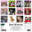 2021 Kittens Calendar Willow Creek