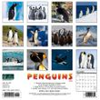 2021 Penguins Calendar Willow Creek
