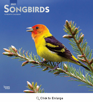2021 Songbirds Calendar