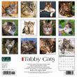 2021 Tabby Cats Calendar Willow Creek
