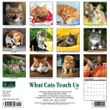 2021 What Cats Teach Us Calendar