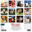 2021 Why Dogs Do That Calendar Willow Creek