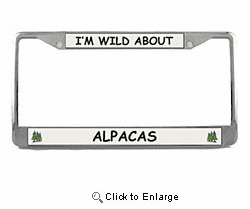 Alpaca License Plate Frame