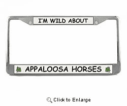 Appaloosa Horse License Plate Frame