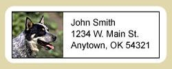 Australian Cattle Dog Address Labels