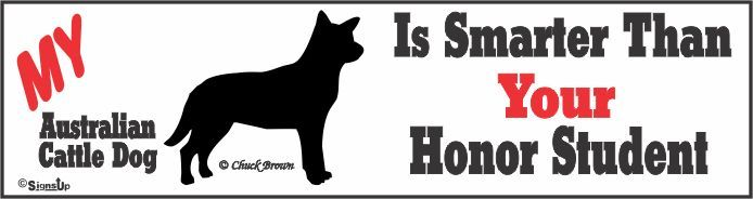 Australian Cattle Dog Bumper Sticker Honor Student