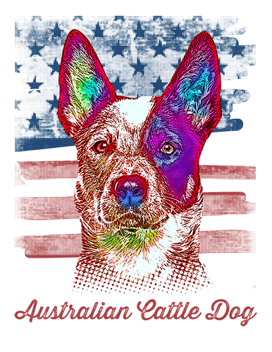 Australian Cattle Dog T Shirt American Flag