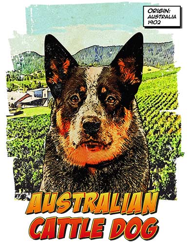Australian Cattle Dog T-Shirt Ancestry