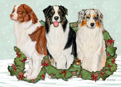Australian Shepherd Christmas Cards