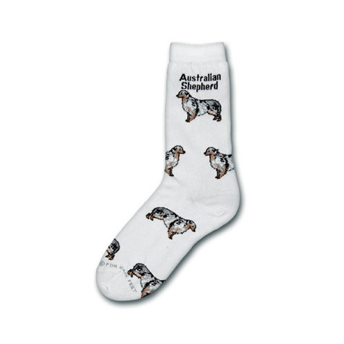 Australian Shepherd Poses Socks