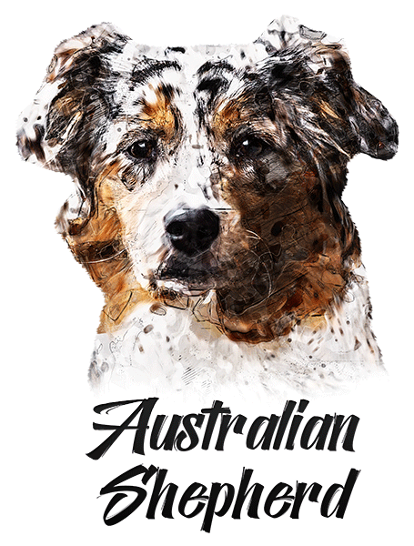 Australian Shepherd T-Shirt - Vivid Colors