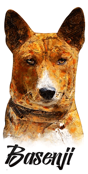Basenji T-Shirt - Vivid Colors