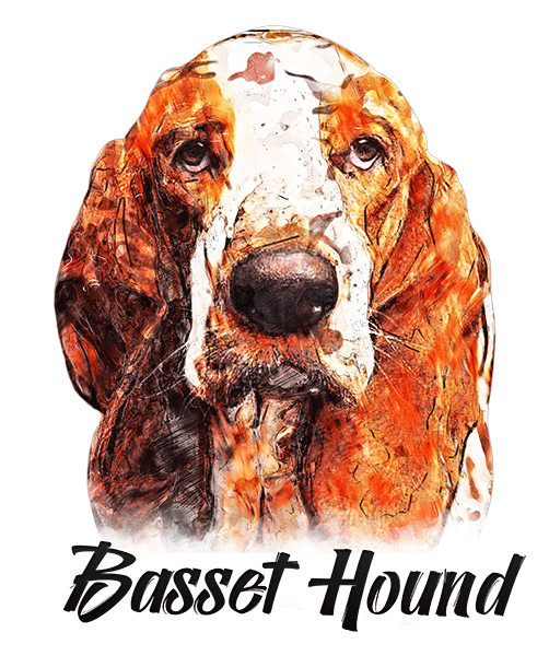 Basset Hound T-Shirt - Vivid Colors