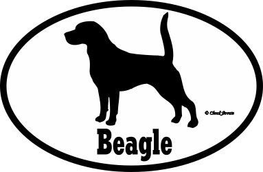 Beagle Bumper Sticker Euro