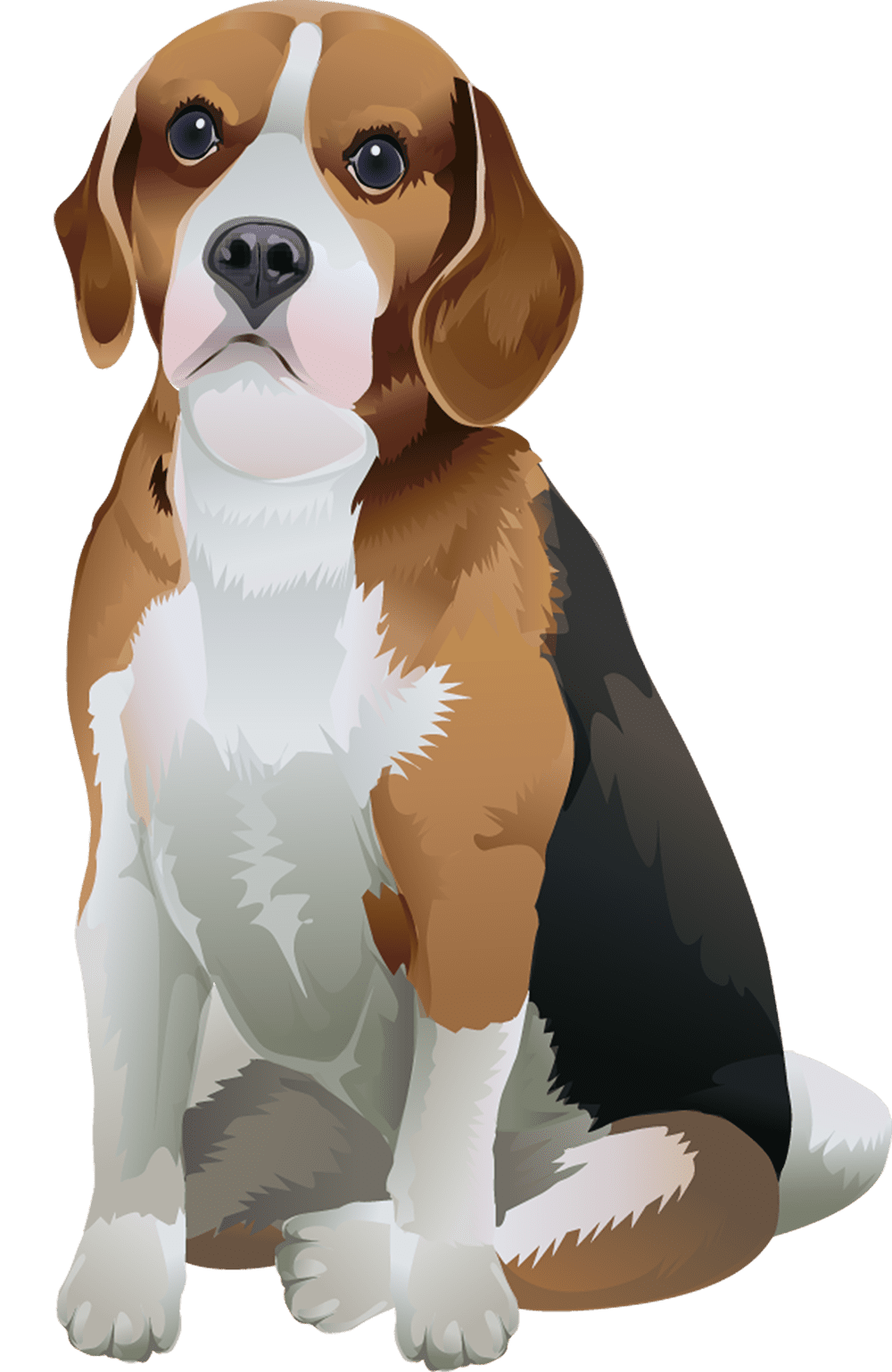 Beagle T-Shirt - Vibrant Vector