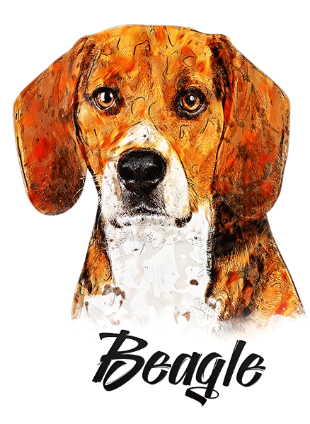 Beagle T-Shirt - Vivid Colors