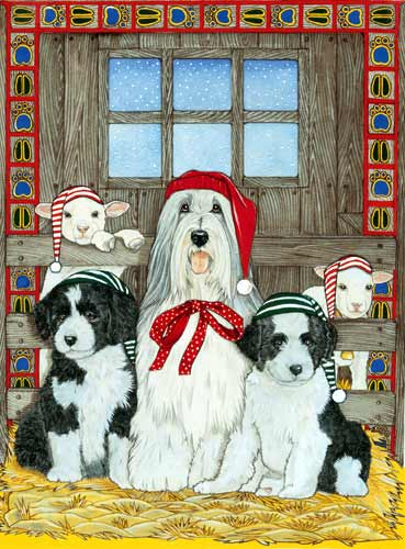 Bearded Collie Christmas Cards