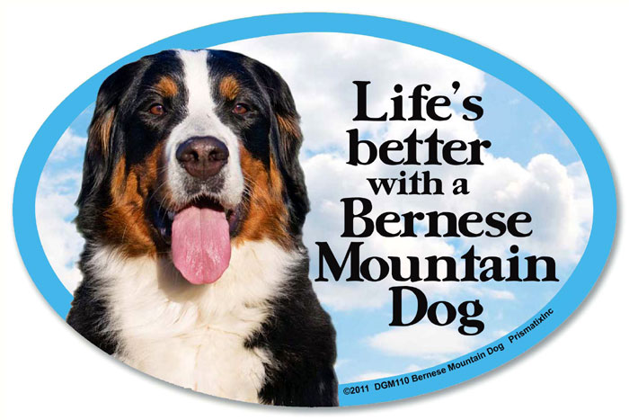 Bernese Mountain Dog Car Magnet - Life's Better