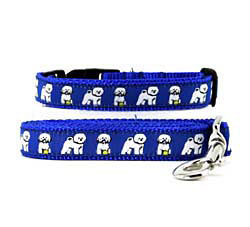 Bichon Frise Collar & Leash