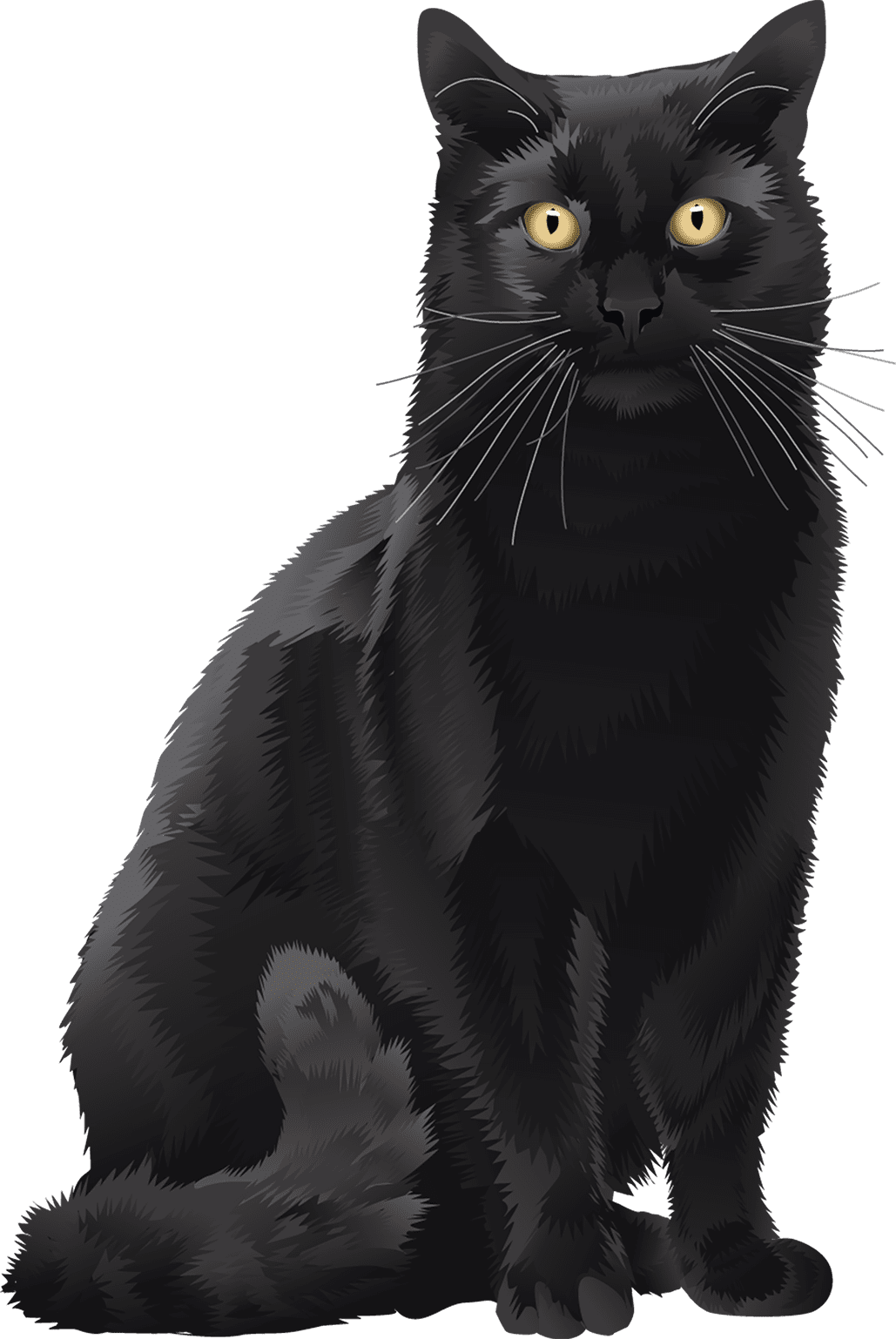 Black Cat T-Shirt - Vibrant Vector