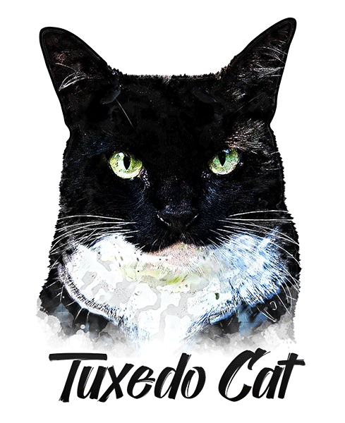 Black & White Cat T-Shirt - Vivid Colors