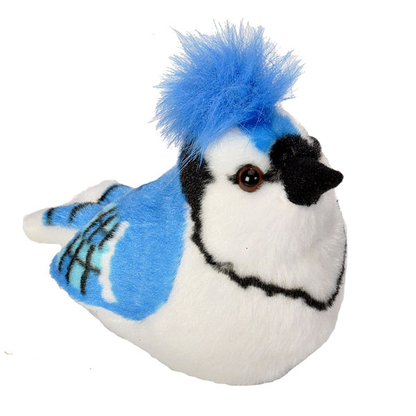 Blue Jay Plush