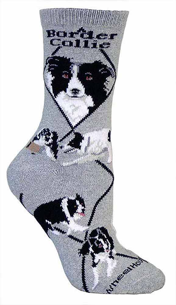 Border Collie Socks