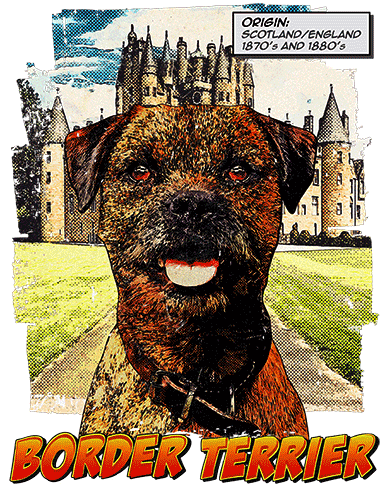 Border Terrier T-Shirt Ancestry