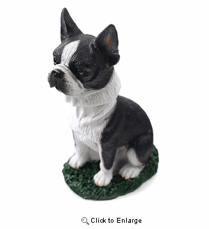 Boston Terrier Bobblehead