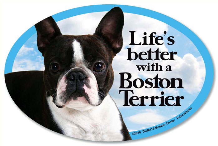 Boston Terrier Car Magnet - Life's Better