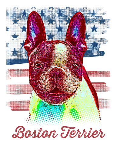 Boston Terrier T Shirt American Flag