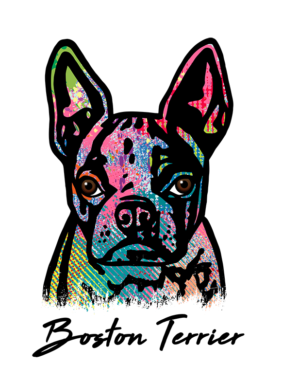 Boston Terrier T Shirt Colorful Abstract