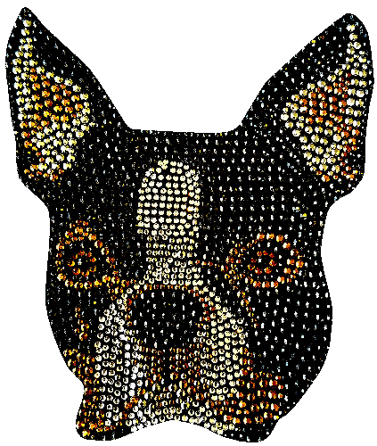 Boston Terrier T-Shirt Rhinestone-Rhinestud
